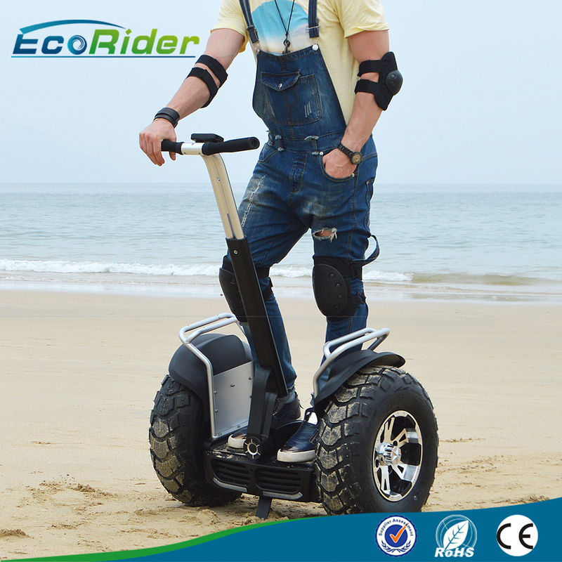 2 Wheel Self Balancing Scooter Off Road Segway Brushless Motor 4000w 110-240V