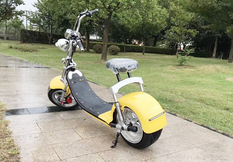 EcoRider 1000W 60V 10ah Big solid tire Two Wheel Electric Motorcycle Scooter Citycoco With front lamp and speedmeter